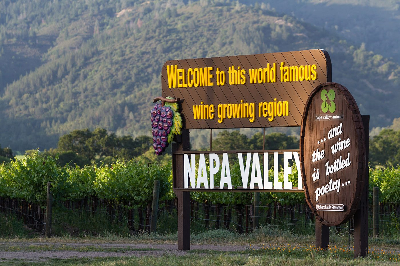 San Francisco To Napa Wine Tours Apex Transportation And Tours